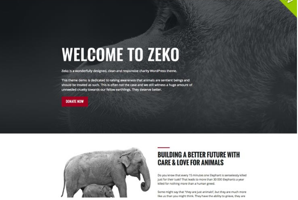 WordPress themes Zeko
